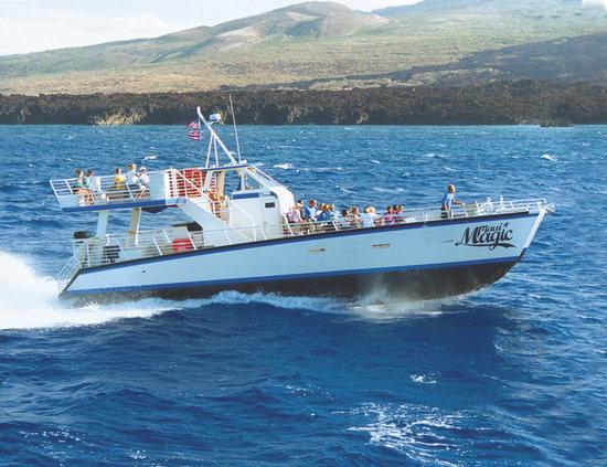 Maui Magic 1