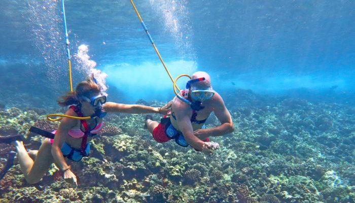 MauiMagic Misc Underwater 076